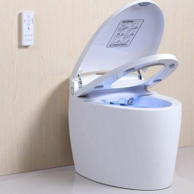 WC Japonais Monobloc de marque TopToilet avec fermeture automatique